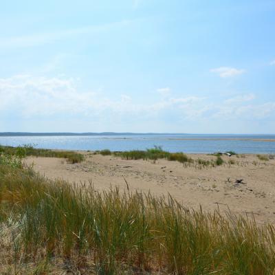 Rezerwat Mewia Łacha w ujściu Wisły - widok z plaży w kierunku zachodnim