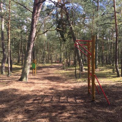 Ścieżka zdrowia w Sobieszewie znajduje się przy ul. Radosnej, na jej leśnym odcinku