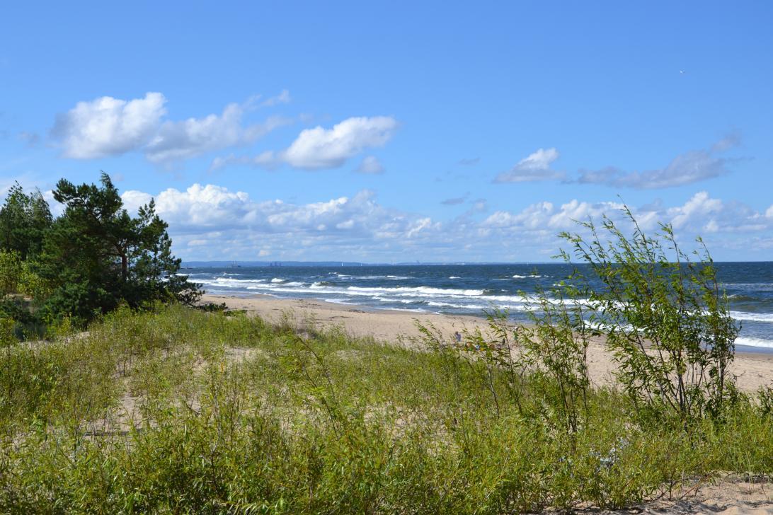 Plaża w Górkach Wschodnich - widok z wydmy