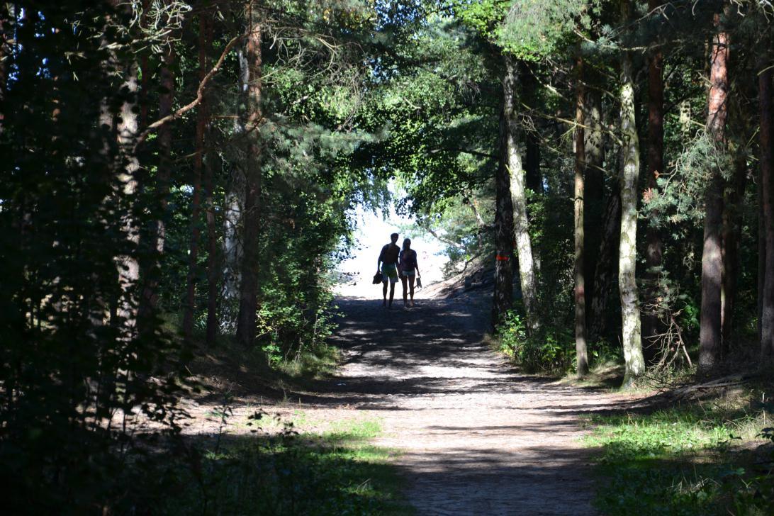 Ścieżka z lasu wychodzi na plażę, po której częściowo przebiega