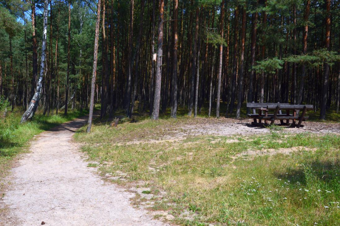 Na trasie ścieżki zorganizowano także miejsce do odpoczynku