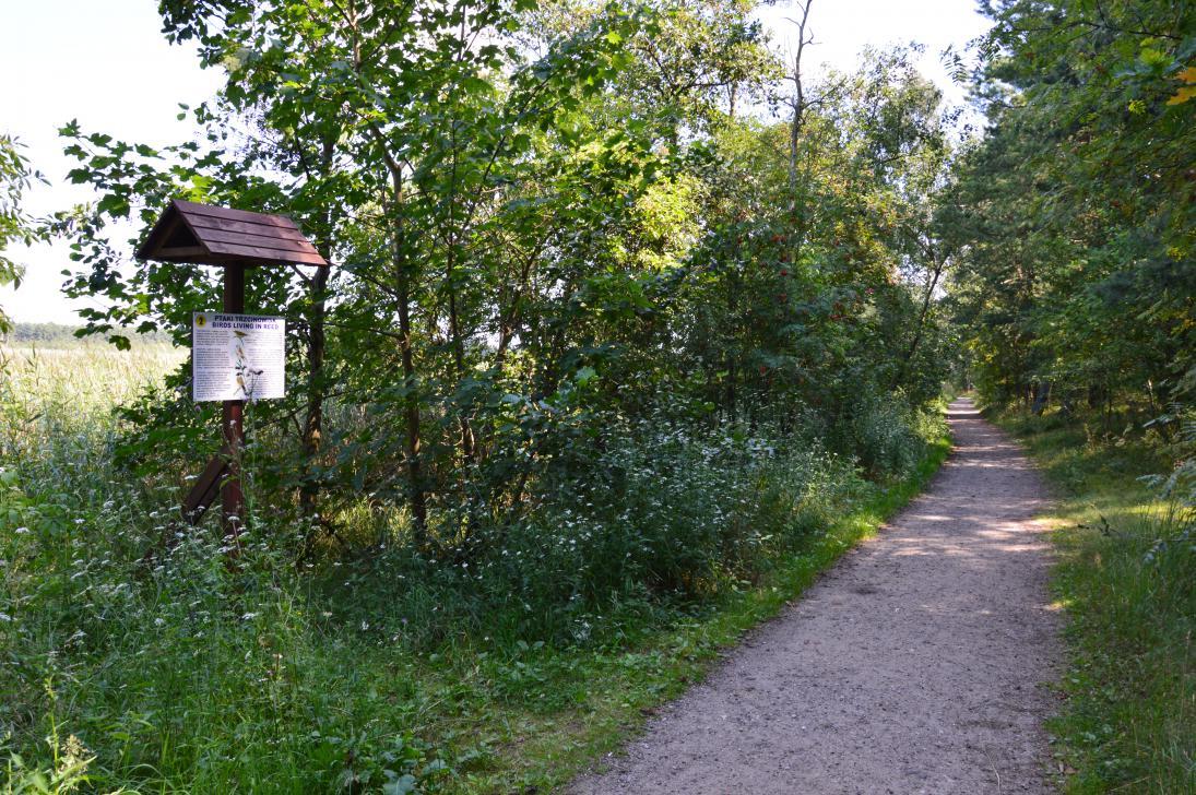 Przy ścieżce znajdują się tablice informacyjne opisujące florę i faunę rezerwatu
