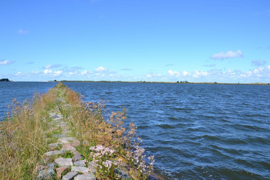 Rezerwat Ptasi Raj - widok z kamiennej grobli na jezioro przybrzeżne i ujście Wisły Śmiałej (po lewej)