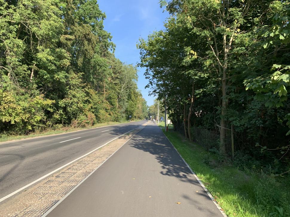 Ścieżka rowerowa Sobieszewo - Świbno wykonana jest głównie z asfaltu