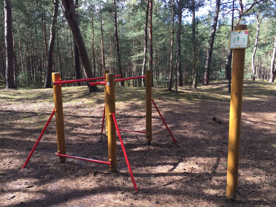 Wszystkie urządzenia na trasie ścieżki zlokalizowane są w lesie sosnowym