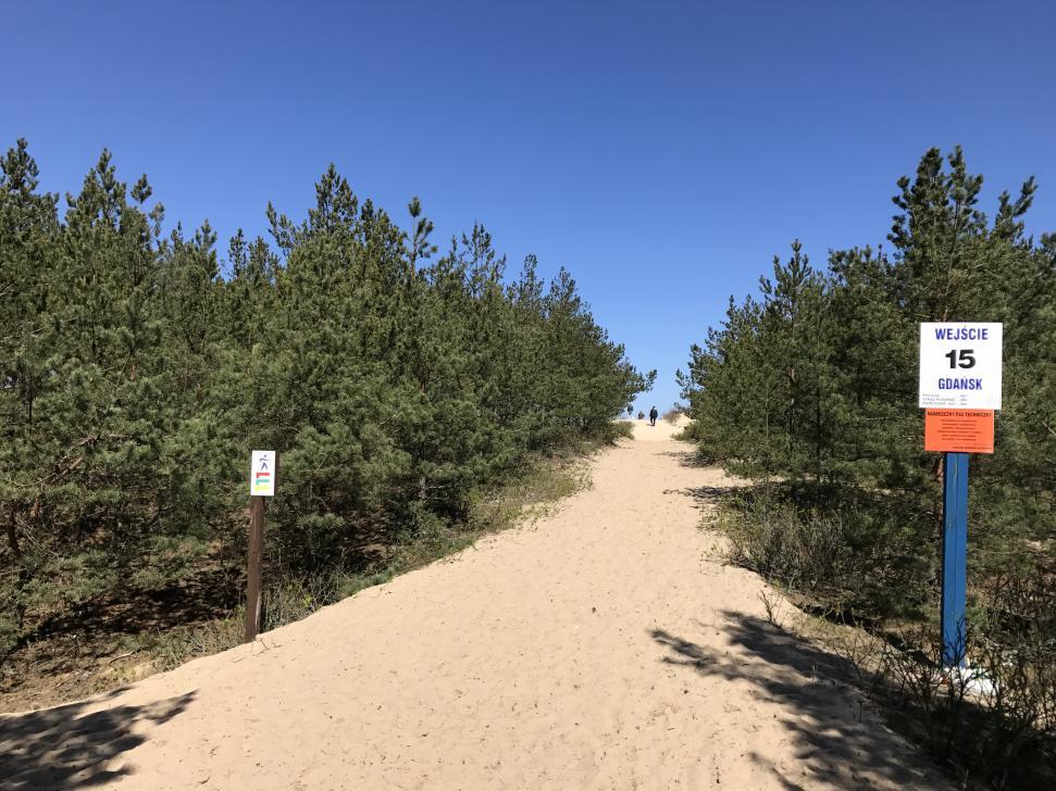 Szlak Nordic Walking w Sobieszewie - wejście na plażę