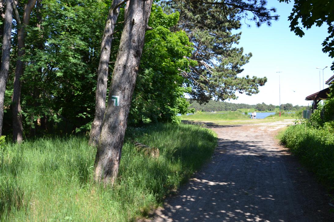 Szlak Wyspy Sobieszewskiej w Świbnie