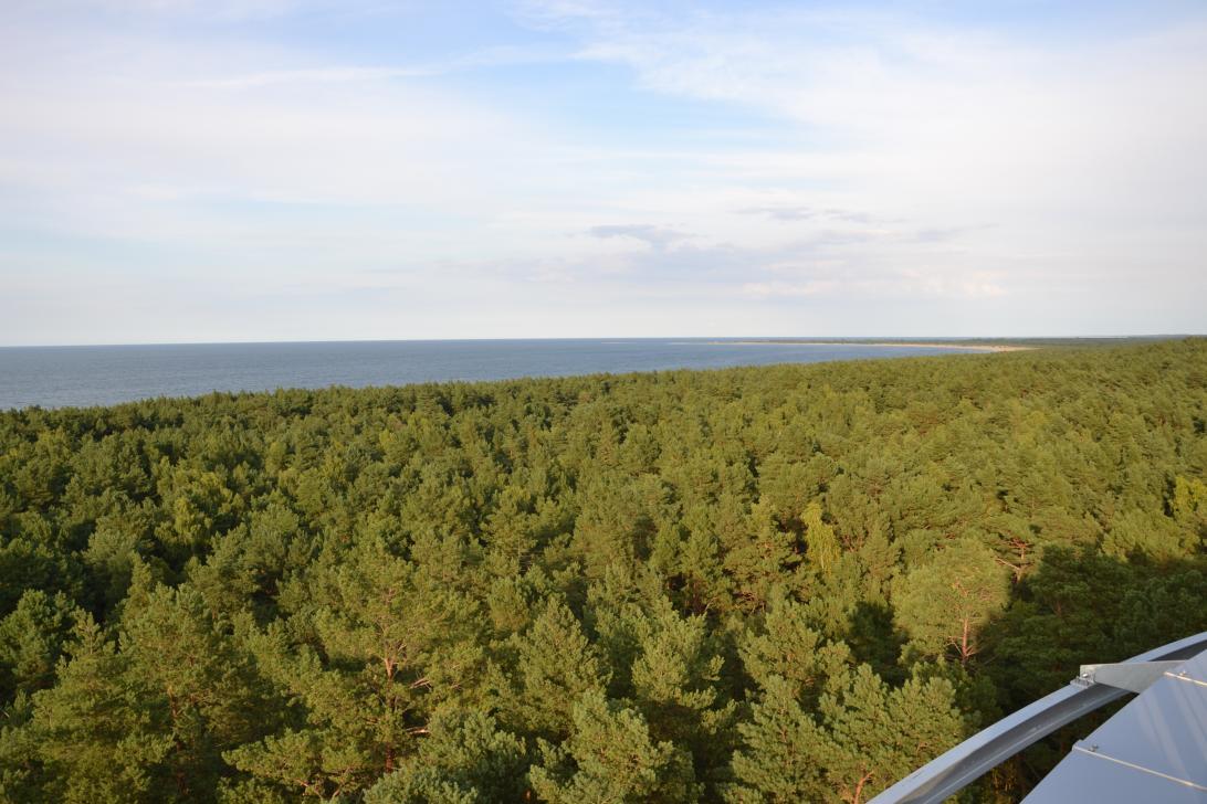 Widok z tarasu widokowego w kierunku północno-wschodnim