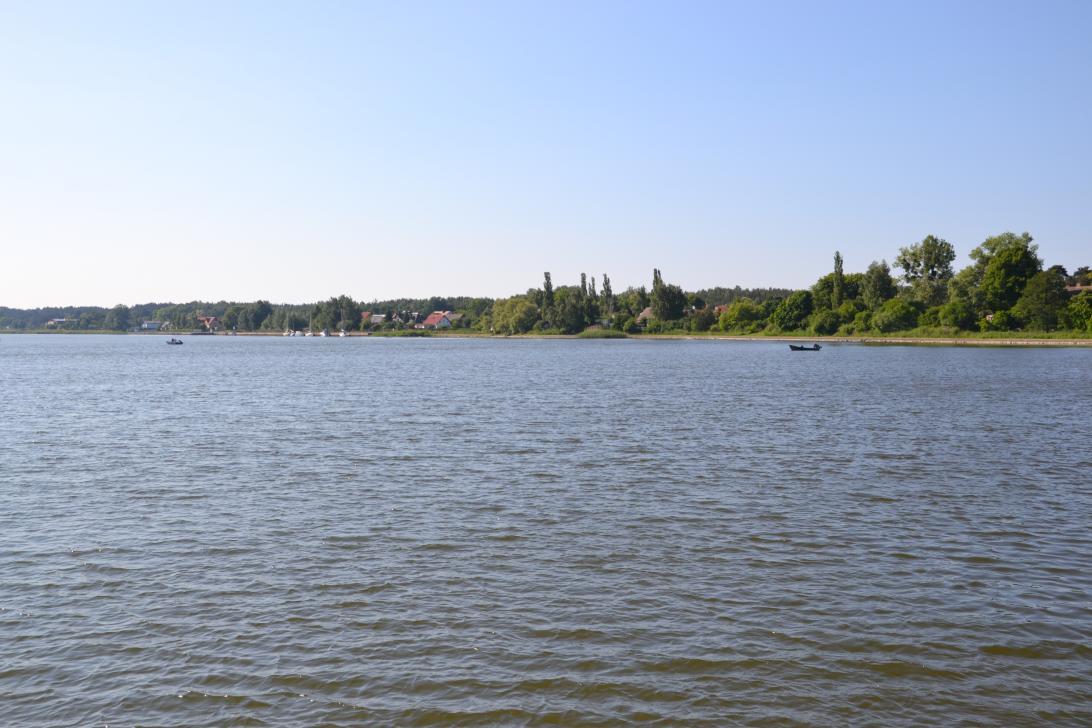 Panorama Martwej Wisły w Sobieszewie - w tle Wyspa Sobieszewska