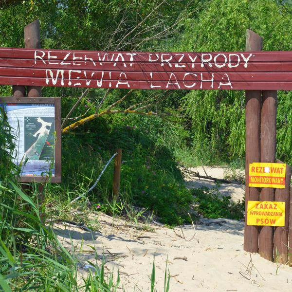 """Rezerwat przyrody """"Mewia Łacha"""" w Świbnie"""
